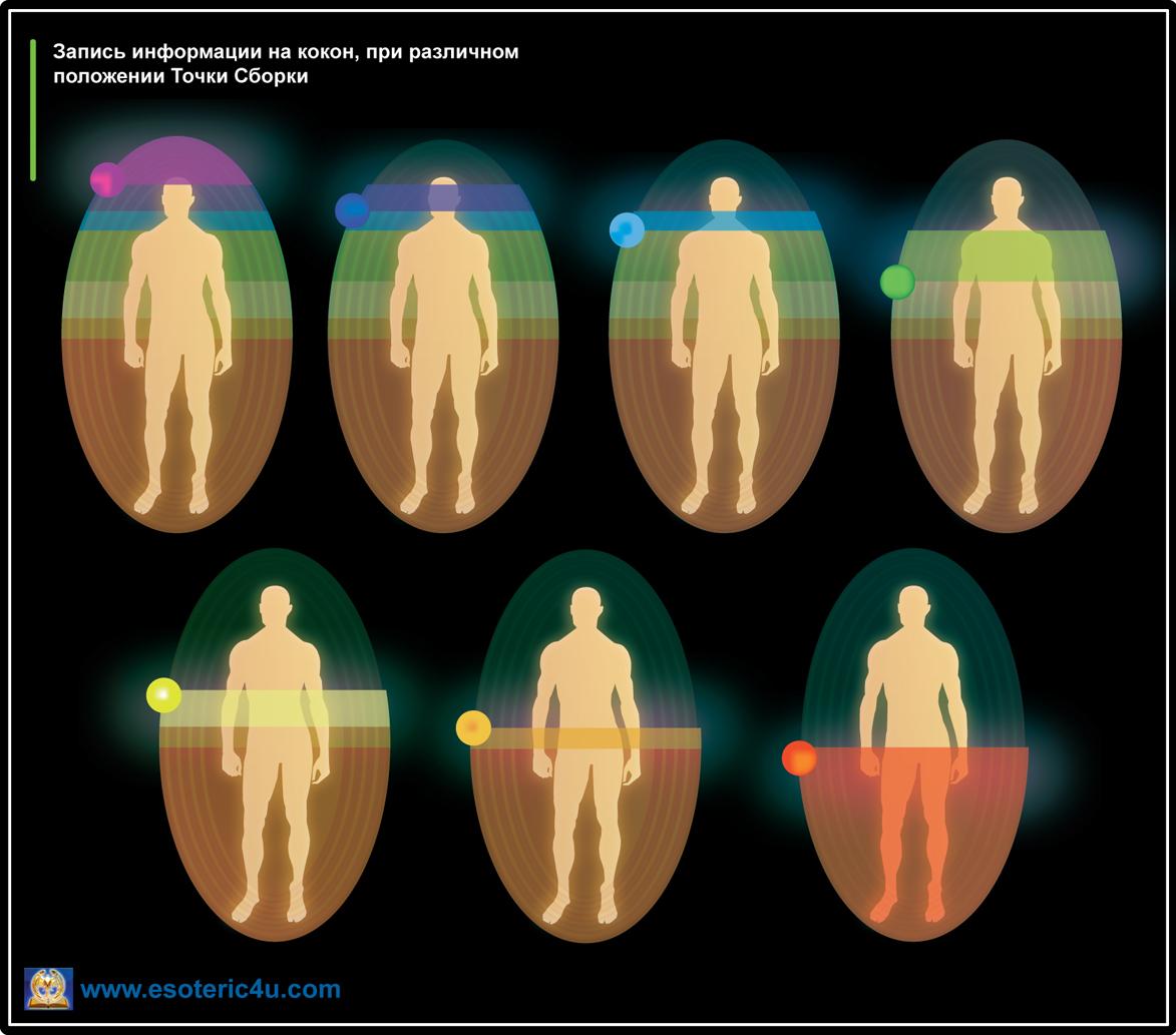 Запись информации на кокона Человека.Положение Точки Сборки влияет на уровень Сознания и возможностей человека